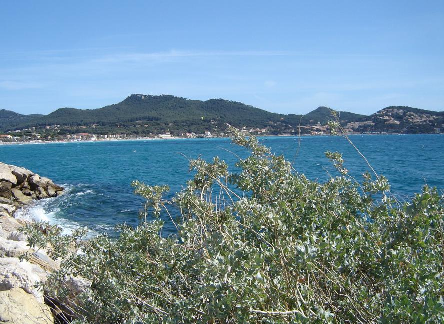 Saint-Cyr-sur-Mer (Var department) France