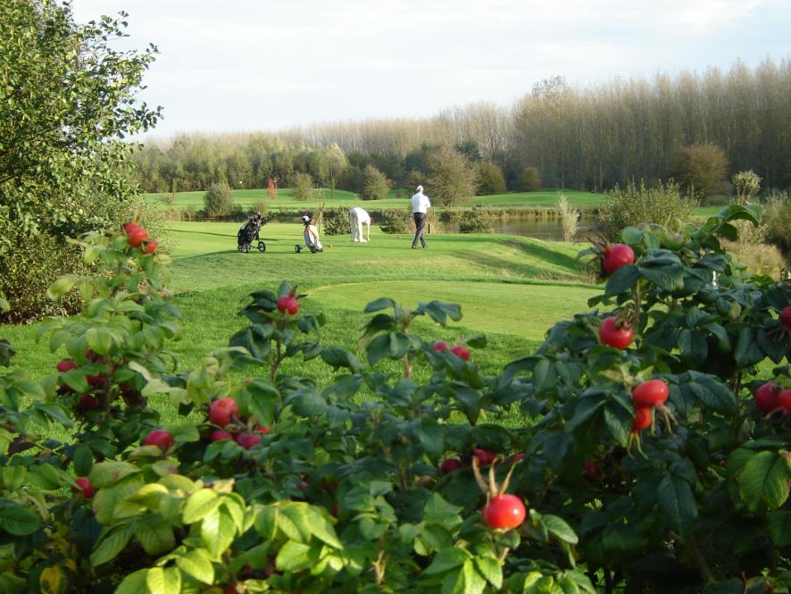 Arras golf