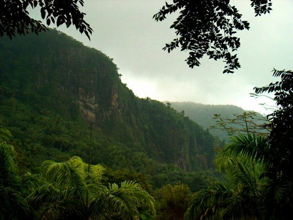 la guayana francesa parque amazonico reserva natural
