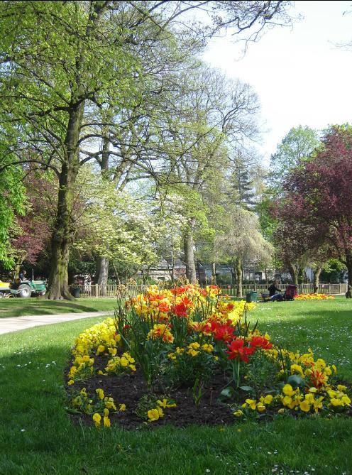 Saint Vaast park