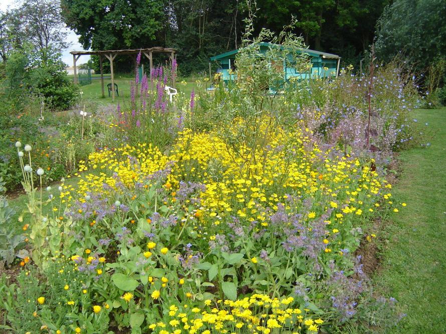 Agny botaanical garden near Arras