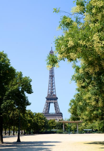 Eiffel_Tower_France