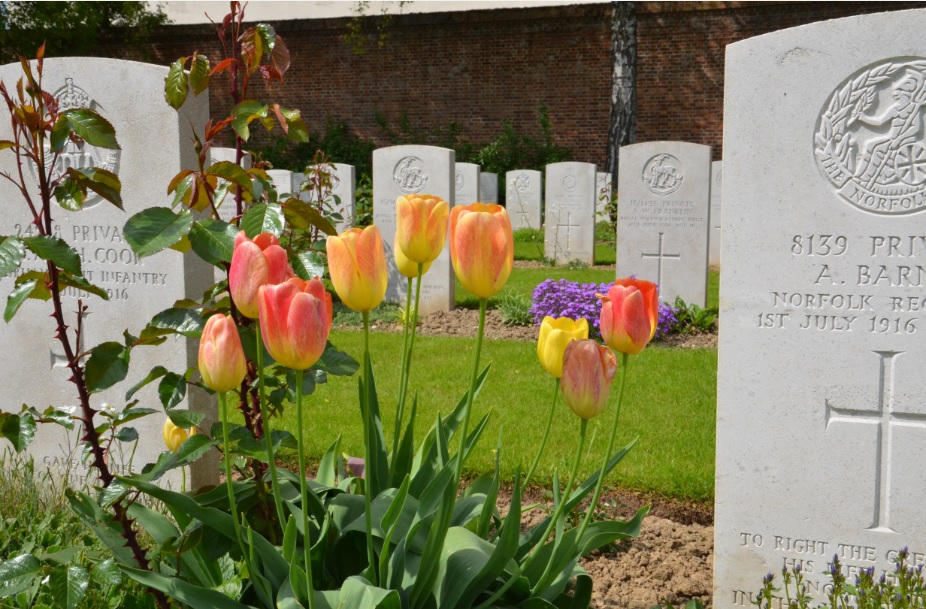 Tulips_Arras_War_Memorial