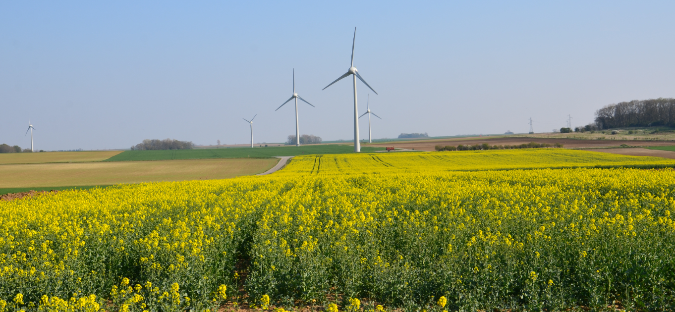 Wind_energy_farms_Arras